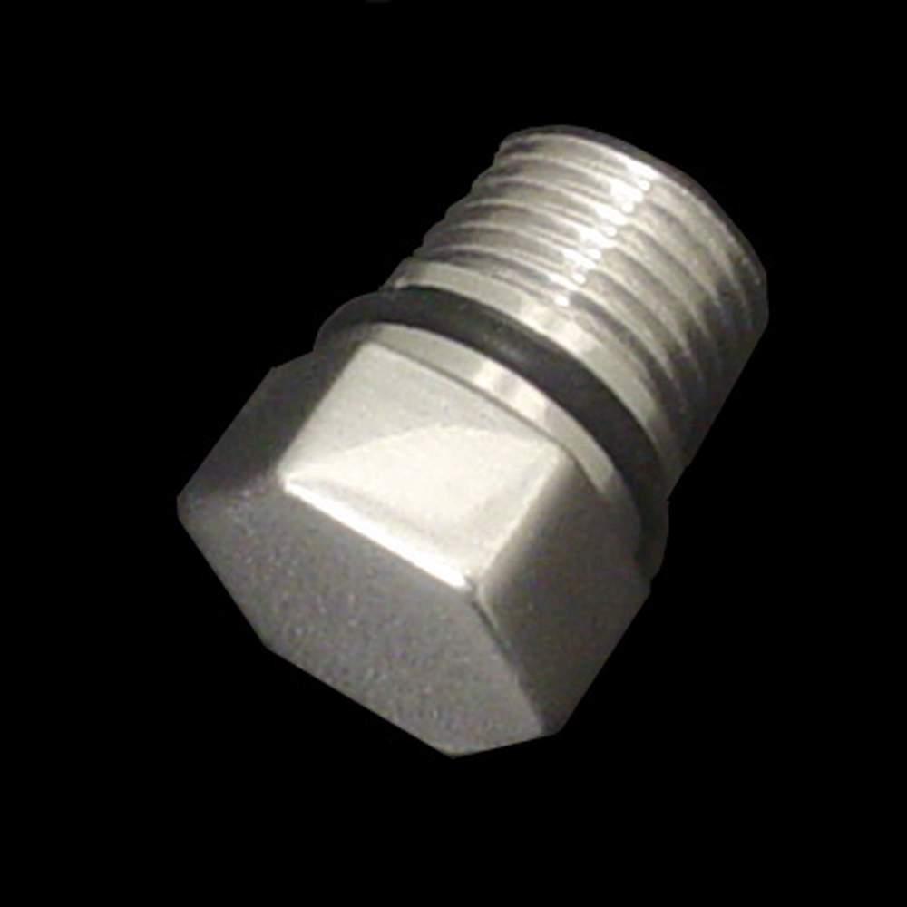 FR-10  GM TPI Cold Start Injector Fuel Rail Plug